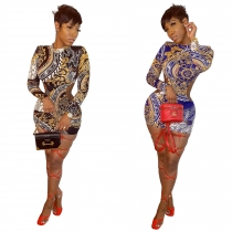 Club Stylish Long Sleeve Bodycon Backless Printing Mini Dress LL6282