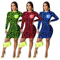 Fashion Digital Leopard Printed Round Neck Long Sleeves Mini Dress AA5178